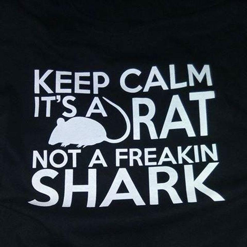 Keep Calm Is A Rat Not A Freakin Shark  T Shirt Black C2